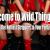Wild Thingz Entertainment